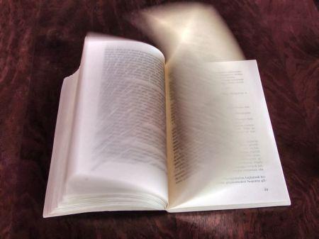 Wie in einem offenen Buch... (Foto: Wikipedia/Nevit Dilmen)